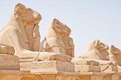 埃及karnak卢克索纪念碑 库存照片