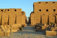 埃及karnak狮身人面象雕象寺庙 库存照片