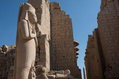 埃及karnak系列寺庙thebes 库存照片