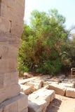 埃及philae寺庙 免版税图库摄影