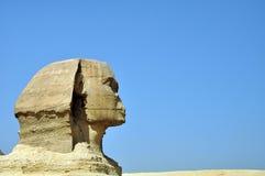 埃及sphynx 免版税库存照片