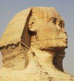 埃及sphynx 免版税库存图片