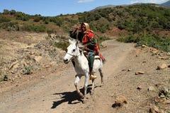 从埃塞俄比亚的御马者 免版税库存照片