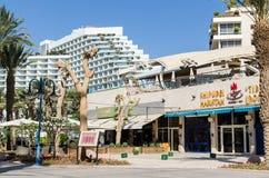 """埃拉特,以色列†""""2017年11月7日:富豪酒店海滩,位于埃拉特散步 库存照片"""