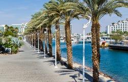 """埃拉特,以色列†""""2017年11月7日:对小游艇船坞的入口,有散步的,现代旅馆复合体,棕榈 免版税图库摄影"""