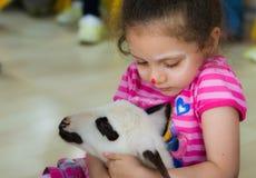 埃斯基谢希尔,土耳其- 2017年5月05日:爱抚羊羔的甜小女孩在动物几天事件在幼儿园 免版税图库摄影