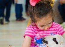埃斯基谢希尔,土耳其- 2017年5月05日:爱抚羊羔的甜小女孩在动物几天事件在幼儿园 免版税库存图片