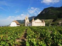 埃格勒城堡,瑞士 免版税图库摄影