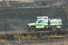 埃潘林区大火的后果 免版税库存照片