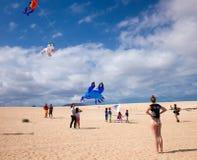 费埃特文图拉岛,西班牙, 2014年11月08日,风筝节日 库存图片