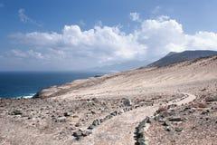 费埃特文图拉岛-在Caleta de la马德拉上的足迹 库存图片