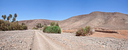 费埃特文图拉岛-从Buen Paso的足迹对Ajui 库存照片