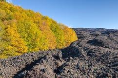 从埃特纳火山的爆发的熔岩荒野 免版税库存图片