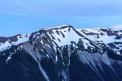 埃蒙丝冰碛, Mt 结构树和草 免版税库存照片