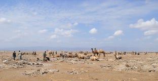 埃赛俄比亚的人员 免版税库存照片