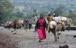 埃赛俄比亚的人员 库存照片
