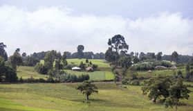 埃赛俄比亚的农场和村庄 免版税图库摄影