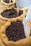 埃赛俄比亚的咖啡豆 免版税库存照片
