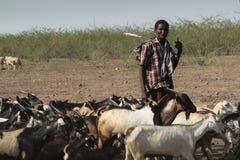 埃赛俄比亚的在远处牧羊人 免版税库存照片