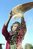 埃赛俄比亚的从五谷的妇女分开的谷壳 库存照片