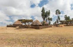 埃赛俄比亚的围场 图库摄影