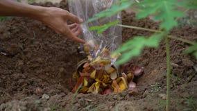 埋没有机家庭残羹剩饭一个人的慢动作射击 概念减少的有机废料 回收的概念 影视素材