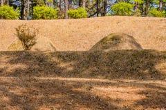 埋葬土墩在一个树木繁茂区 库存照片