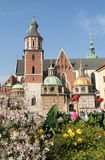 城堡克拉科夫波兰wawel 免版税库存图片