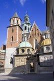 城堡克拉科夫波兰wawel 免版税库存照片