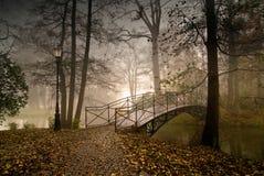 城堡公园在普什奇纳,波兰 免版税库存图片