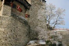 城堡列支敦士登 免版税库存图片