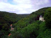 从城堡卡尔啤酒杯的看法 库存照片