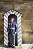 城堡卫兵布拉格 免版税图库摄影