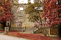 城堡历史最近的傲德萨 免版税库存图片