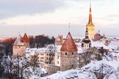 城堡和塔林老镇的全景从观察台的在冬天 库存图片
