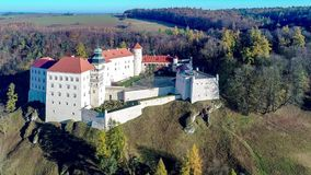 城堡在克拉科夫,波兰附近的Pieskowa Skala 股票录像