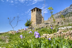 城堡在克鲁亚 免版税库存图片