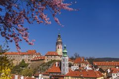 城堡在匈牙利 城堡在匈牙利 向西大教堂 最大的教会在匈牙利 艾斯特根大殿的看法 库存照片