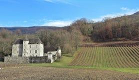 城堡在葡萄园里 库存图片