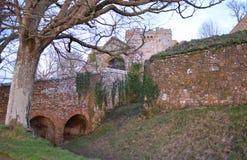 城堡墙壁和树在冬天 免版税库存照片