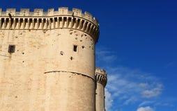 城堡外部tarascon 库存图片