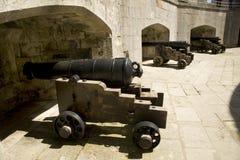 城堡大炮在波特兰 图库摄影
