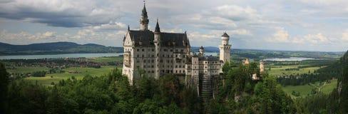 城堡天鹅 免版税库存照片