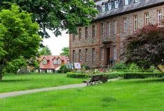 城堡庭院在哈瑙,德国附近的兰根塞尔博尔德 库存图片