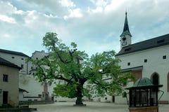 城堡庭院萨尔茨堡 免版税库存图片