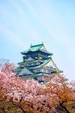 城堡日本大阪 库存图片