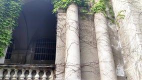 城堡曲拱和柱子纠缠与绿色常春藤 股票视频