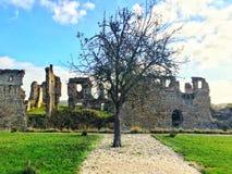 城堡树 库存照片