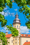 城堡涅斯维日和叶子的高塔 免版税库存照片