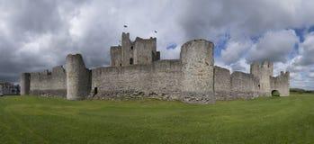城堡爱尔兰修整 库存图片